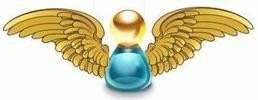 Anjos & Arcanjos