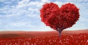 Encantamento de Amor com Árvores