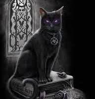 Gatos e sua função no mundo da magia