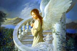 anjo da guarda27
