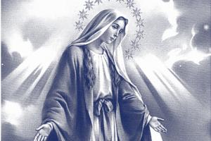 Resultado de imagem para oração de entrega a nossa senhora